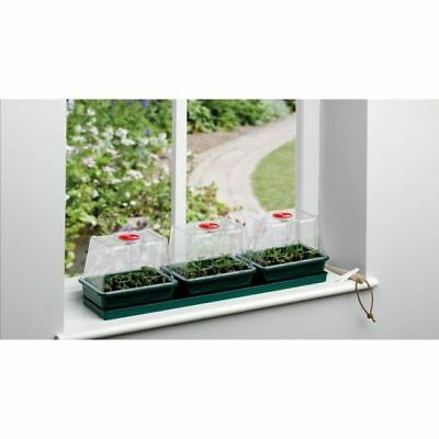 Three Top Windowsill Propagator
