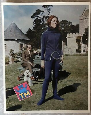 1960's The Avengers - Diana Rigg - 8x10 Glossy Photo! - Buy 3, Get 1 FREE!