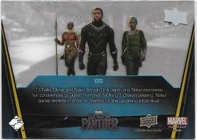 Back Home Acetate Parallel #12 - 2018 Black Panther