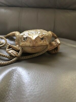 Real Frog Coin Purse