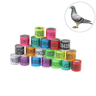 Creative 10 X 8mm Leg Rings Light Pink Plastic Clic Easy On Pigeons Chicks Poultry New Bird Supplies Other Bird Supplies