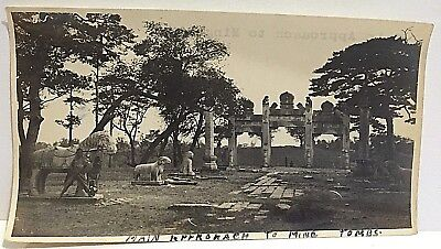 Ming Tombs China Vintage Photograph Guardian Animals Main Gate Approach B&W