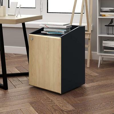 DEVAISE Mobile Wood File Cabinet - 2 Drawers Inside,Letter Size,Office Furniture