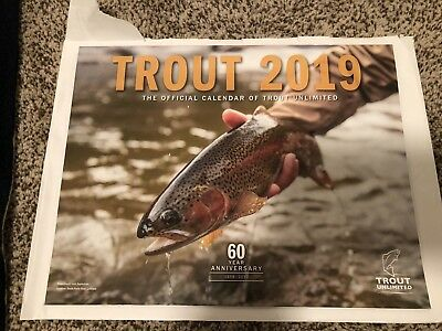 NEW 2019 Trout Unlimited calendar 14 month calendar Nov 18 - Dec 19 fly fishing