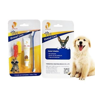 Pet Products Pet Toothpaste Set Pet Toothbrush Dog Oral Care Cats and Dogs Tooth