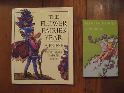 Flower Fairies Book & Wall Art Wing-Wing Offer! Cicely Mary Barker