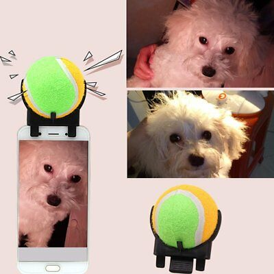 Pet Selfie Stick Ball Pet Dog Tennis Ball Dog Cat Take Photos Training Toy DS