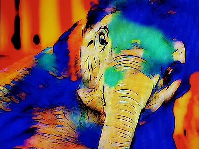 Elephant baby large downloadable prints, choose from 4 colors,print on anything