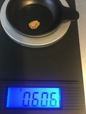 0.606 Gram Course Gold Nugget Dredged Near Gold Hill, Oregon