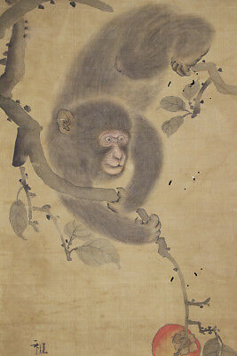 "JAPANESE HANGING SCROLL ART Painting ""Monkey"" Asian antique  #E4843"