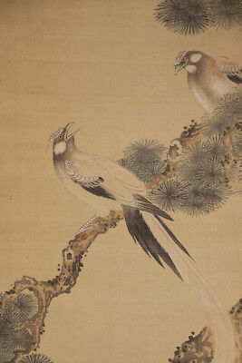 "JAPANESE HANGING SCROLL ART Painting ""Birds on Pinetree"" Asian antique  #E4271"