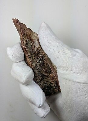 Early Upper Palaeolithic Organic Drill. c40k