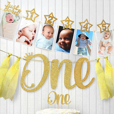 1st Birthday Party Baby 1-12 Month Photo Clip Banner Glitter Garland Bunting UK