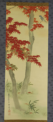 "JAPANESE HANGING SCROLL ART Painting ""Red leaves and Bird"" Asian antique  #E4886"