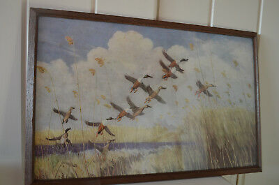 1934 Art Deco FLYING DUCKS GEESE Picture Print Painting Frame Signed Peter Scott