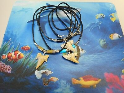 Lot of 3 Sterling Silver Wired Fossil Shark Tooth Necklaces Beachwear