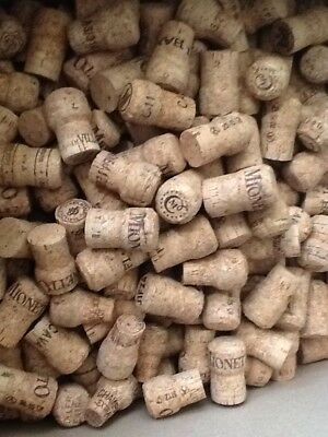 50 High Quality Sparkling Corks, Crafting ,Champagne.