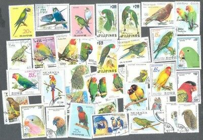 Parrots 50- all different stamps collection-some Budgies,Macaws,parakeets etc