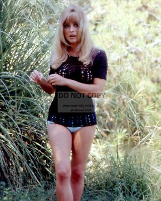 Actress Sharon Tate Pin Up - 8X10 Publicity Photo (Rt353)