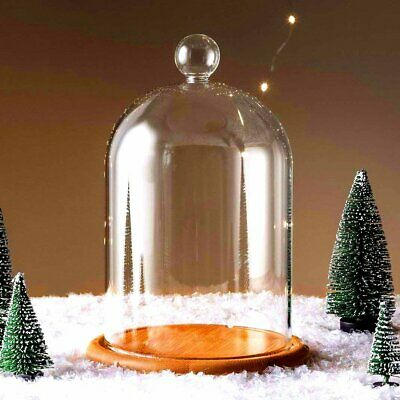 Large Domed Glass Cloche Top Cover Glass Bottle Display DIY Cloche Bell Jar Dom