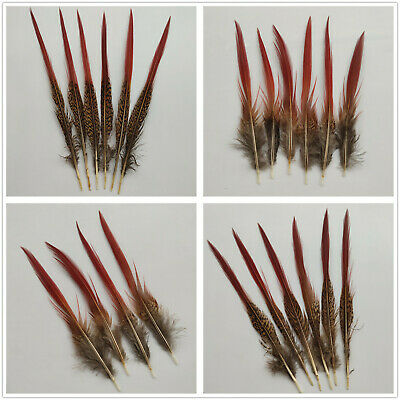 10-100PCS Beautiful 2-12 inches/5-30cm Natural Golden Pheasant Feathers Select