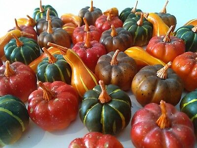 40 Mini PUMPKINS for fall VILLAGE Displays HALLOWEEN automne orange green red