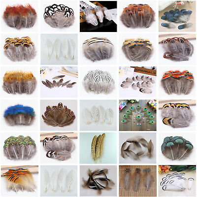Hot 10-100pcs Natural Pheasant Feathers 4-25cm/2-10inches DIY Jewelry Decoration