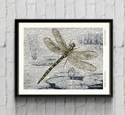 Dragonfly Lily Pad Pond Dictionary Art Print Dragonfly Picture Wall Art