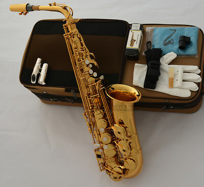 Professional Gold Mercury Alto Saxophone Sax With Metal Mouth Engraving Bell NEW