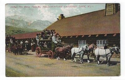 Yellowstone National Park, Wyoming, Stagecoach Pulled by Six Horses, 1908