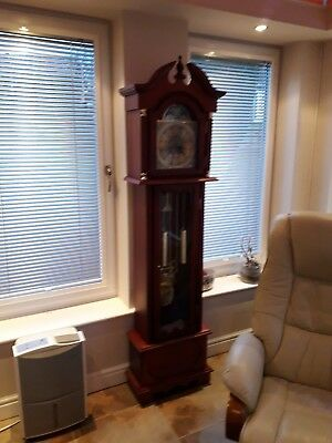 Grandfather  clock x display in new condition