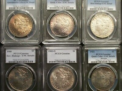 Lot of SIX PCGS UNC Morgan Dollars !! ~Nice w/ Pretty Toning~ LOW BIN