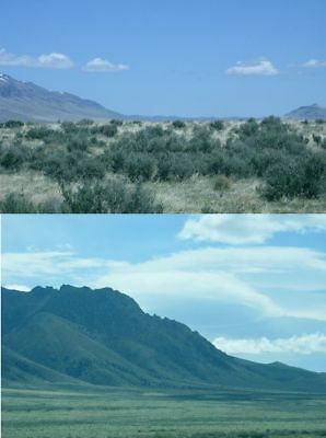 40 Acre Cowboy Country Land Nevada, Dirt Road Near Mountains, Views, Cash Sale