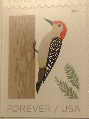 1 Single New USPS Forever One Ounce Postage Stamp - Woodpecker Bird - Christmas