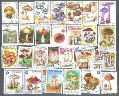 Fungi Mushrooms-100 all different stamp collection