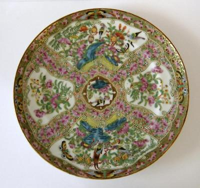 An Antique Chinese Famille Rose Plate With Superb Decoration 21.5 cms