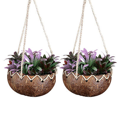 Coconut Shell Flower Pot Hanging Home Garden Plant Holder Stand Home Decor  sc 1 st  PicClick & COCONUT SHELL FLOWER Pot Hanging Home Garden Plant Holder Stand Home ...