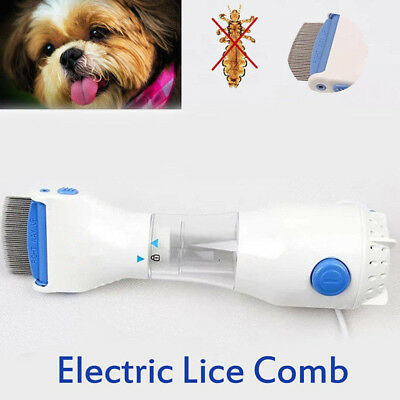 Round Teeth Electric Comb Filter Pet Head Led Lice Cleaner Hair Treatment Dog UK