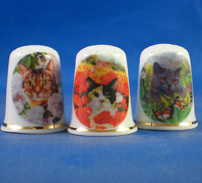 Birchcroft Thimbles Set of Three Garden Cats Gold Top
