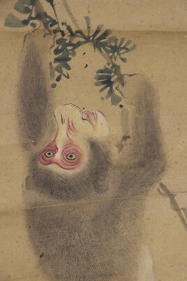 """JAPANESE HANGING SCROLL ART Painting """"Monkey"""" Asian antique  #E5133"""