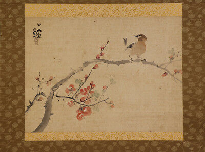 """JAPANESE HANGING SCROLL ART Painting """"Bird and Flower"""" Asian antique  #E5127"""