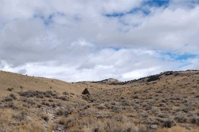 GOLD MINE Historic Bannack MT Hangman's Gold #4 20 Acre Gold Mining Claim