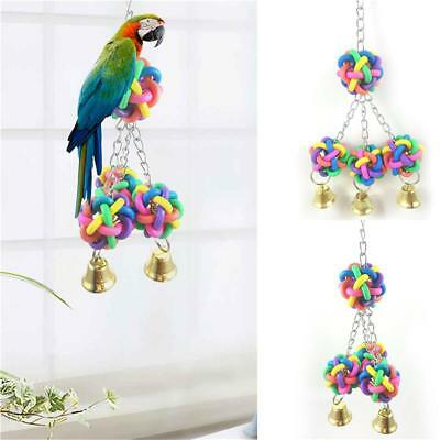 Colorful Bites Parrot Toy Acrylic Rope Bird Toys For Parakeets Cockatiels D650