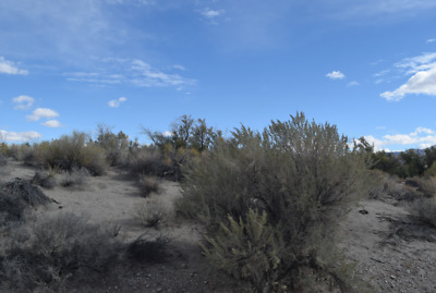 """20 Acre Gold Mining Claim (Placer) """"Rye Patch District"""" Pershing County Nevada"""