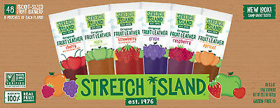 Stretch Island Fruit Leather Snacks Variety Pack - 15ml Strips - 48 Count