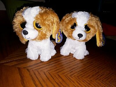 TY Beanie Boo Cookie dog Purple tags solid eyes Retired x2 Adorable & Soft