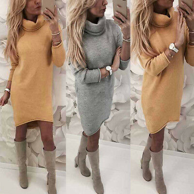 Women Autumn Winter Wear Long Sleeve Slim Fit High Neck Bodycon Mini Dress