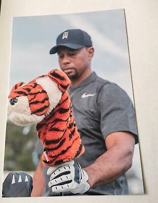 "Tiger Woods Brand New 4""x 6"" Photo"