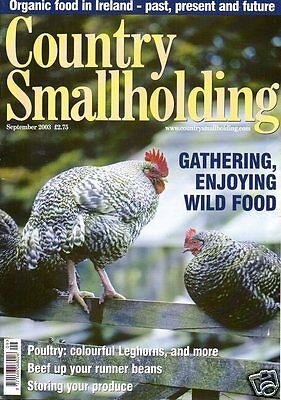 COUNTRY SMALLHOLDING Magazine September 2003 LEGHORNS RUNNER BEANS WILD MUSHROOM