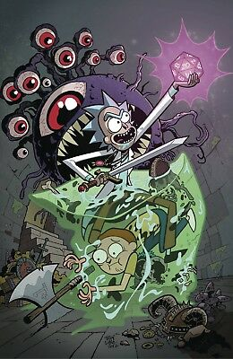 Rick And Morty Vs Dungeons And Dragons #1 Cover A From Idw